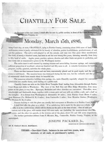 Chantilly for Sale